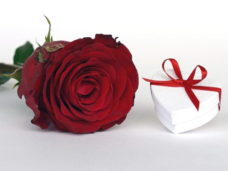 gift combo offer