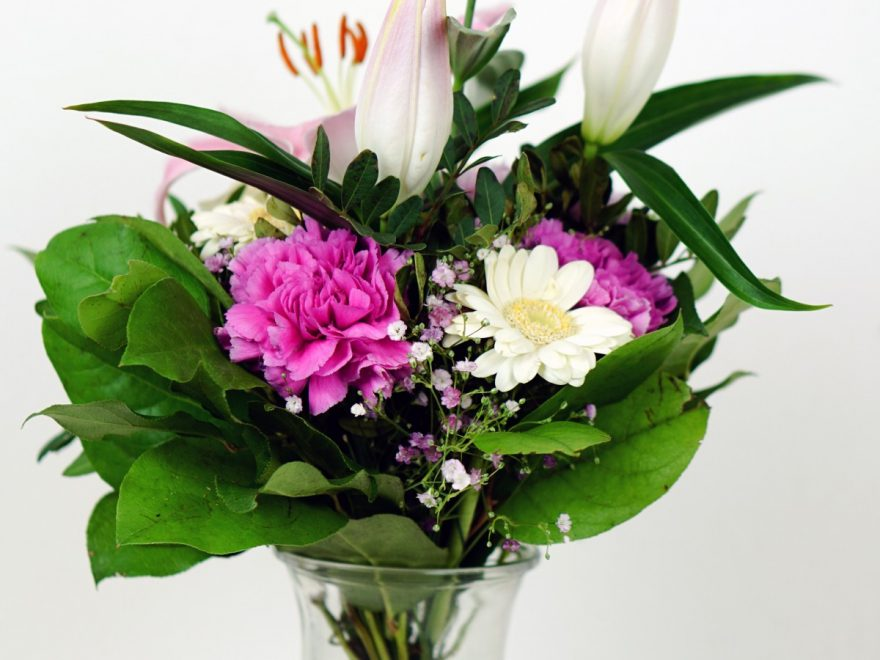 All about congratulation flowers