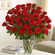 Buying roses for someone doesn't take much contemplation, as it is the easiest, trendiest and always the most contemporary choice of showing love and care. This 36 red rose bunch reflects togetherness and shows unbound love and its existence. The vase symbolizes the strong base into which these red roses are embedded and which also makes it more attractive. Buy this bunch now to see the receiver brimming with smile and mirth which these roses bring along!