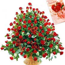 productRed Roses epitomizing nothing but happiness and are put together in this basket so that you may place an order to surprise your beloved. A set of 100 Red Roses are just perfect for Valentine's Day when you can reflect your audacity officially to express your emotions. With this large arrangement of roses, you are certain to fair well and be lucky in love. For the rest you want to express, you get a Valentine's Day Card that you may fill further with romantic messages. Buy now!