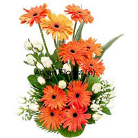 productThe striking placement of white roses and orange gerberas is just like the tranquility of the dawn where the white is the horizon and the orange depicts the subtle light of the rising sun. So if you are beginning a new relationship, or mending the old ones with your near and dear ones, who were away from you for some reason, you may just go for this divergent, yet beautiful alignment of white and orange.