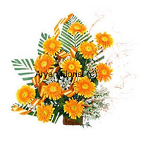 productReplicating the warmth and affinity of sunflowers and the sun, the twelve yellow gerberas just do the needful in the most apt way. You may order these gerberas to present them to your kids, boss, colleague or a friend who has passed in exams with flying colors or has taken a positive step towards life. These yellow flowers signify intellect, loyalty and freshness, so present these with warmth and love and encourage your loved ones.
