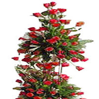 The more the merrier! This four feet tall arrangement of 300 red roses makes for a grand romantic gesture that is sure to charm anyone. Each flower is arranged in a manner that it's beauty is prominent. Green leaves and fillers add to the design of this arrangement. This one is perfect for a proposal, an anniversary, a wedding gift or a birthday gift for the one you love. Fresh misty smell of 300 red roses is sure to overwhelm any space.