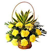 productBasket of twelve yellow carnations are ideal if you want to encourage your children when they are planning to take that leap in their or life, personal or professional. So to add to that message of encouragement, present this amazing basket to your son/daughter who has been considering you stringent and boring. Show them your warmth and be their friend and beguile them with a movie, to just add to those happy times! Place your order now!