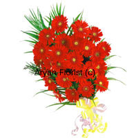 productTo brighten someone's life, these twenty four scarlet colored gerberas are the best way to do it! Present them to your friend, family, children on their special day and see their love for you in full swing. The intensity of red color will overwhelm the receiver and will initiate the hidden passion. This will give them power to fair well in whatever they do. So be determined to encourage with the bunch of these red gerberas.