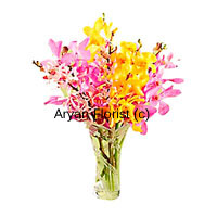 productIn vibrant shades of yellow, pink and red, a bounty of colourful orchids in a vase is sure to brighten up everyone's day. These exotic blooms are arranged in a simple and elegant fashion. The simple vase heightens the majestic appearance of the orchids. Fragrant and beautiful, a collection of orchids in different colours is certain to stand out even in the biggest gardens. This one makes for a perfect present, for friends and professional associates alike.