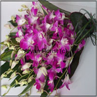 productThis enchanting harmony of purple orchids and seasonal blooms to join the party is assorted to impress! Held together with long fresh green leaf stems, the orchids and seasonal flowers are specially chosen to design this bouquet. Adding to the charming look is the mesmerizing fragrance of fresh blooms. Sprinkle some misty water droplets and this arrangement will revitalize any room. It remains as fresh as it arrived at your doorstep, for days.