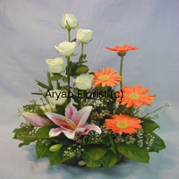 productWith a symbol of numerous emotions, this bunch of assorted lilies roses and gerberas laid on a bed of green leaves is a must give away rendering a beginning of a new life. This magnificent bouquet will work wonders when it is presented to the special person in your life. The green leaves are the base of this ultimate pack of flowers, showing strength and support in your life. Place your order now!