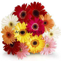 productTwelve Assorted Gerberas in different colors fulfils the hollow of your heart with magnitude of love, care and respect. These various colors of the flowers symbolizes these heartfelt emotions giving them a tangible shape. Through these flowers, the emotions become real and one can feel the intensity of these otherwise intangible ways to prove that you are present in all good and bad times. So before leaving for a new city, this can be your assurance present.