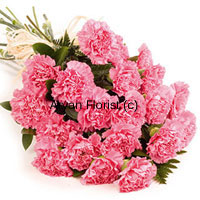 productKeeping it pink, this bunch of 24 carnations and greens makes for a simple and elegant gift to send wishes on the occasion of anniversary. The long stem flowers are bunched together to create a drama of each flower getting a special place, while a fancy satin ribbon holds them all together. The flowers will remain fresh for days when placed inside a vase. Order this to send your wishes to friends, family or your own spouse.