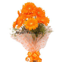productThe incredible way of making way into the heart of people you love, adore or admire is this bunch of lovely orange gerberas which you buy with us. These flowers are lively and are sure to make the heads turn when you carry it to your destination. Gifting these Orange Gerberas (twelve in number) is the most quintessential way to say what you mean as it comes straight from the heart. Place your order now!
