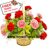 productFresh blooms � 6 red carnations and 6 pink carnations � are stunningly arranged in an elegant cane basket. The flowers get delivered along with a free Rakhi. This Raksha Bandhan expresses love for your brother with this combo. The flowers are fresh and fragrant. The Rakhi is elegantly designed with sparkly beads and embellishments to create a charming design.