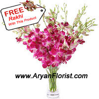 productThe magnificence of orchids is unmatched. Handpicked by our expert florists a bunch or orchids is aesthetically put together in a glass vase to bring out its natural beauty. The beautiful orchids are delivered along with a free elegant rakhi. Order this combination to be sent to your brother and celebrate Raksha Bandhan with flair.