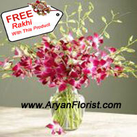 productSend this glorious combination of orchids in a vase and a free Rakhi to your brother on the festive occasion of Raksha Bandhan. The orchids are handpicked and creatively put together along with seasonal fillers in a glass vase. The elegant glass vase adds to the charm. A beautiful Rakhi is delivered along with the vase.