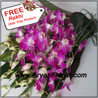 productA free Rakhi with a beautiful bunch of royal, ornamental orchids with seasonal fillers will make your festival an unforgettable one. Orchids signify strength that epitomizes the relation between a brother and sister. The strength with which the brother promises to take care of the sister is indicated with this marvelous bunch. The promises that are further made will remain powerful as this bunch is as binding as the bond of love. Please hurry and place the order for this significant bunch!