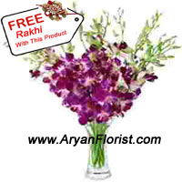 productWhen you receive orchids, the day is certainly special, but when you receive orchids in a vase, that is moment to capture. So seize your happiness on this Raksha Bandhan with beautiful orchids that not only comes with an appealing vase, but also a free Rakhi for your brother/sister. Aryan florists will deliver this set of happiness at your doorstep and assure you a day full of happiness and joy. Place your order now!