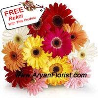 productCelebrate this Raksha Bandhan with some flowers and gift your sibling, this set of 12 assorted Gerberas that radiate myriads of emotions. Each color of the Gerberas signify the strength of the brother sister relation. The yellow and red Gerberas emanate the friendly bond that the duo shares, along with the intensity of admiration they have for each other. The free Rakhi that you receive with this will symbolize the affiliation between the siblings. Order now!