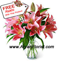 productFresh lilies, if delivered on this Raksha Bandhan will equate a million gifts. To bring smile to your lovely sister/brother, don't think much and order these extravagant flowers! These fresh lilies come in a vase and can also enhance the look of your room. Aryan florists have a range of lilies that they will present in this vase. Along with that, they will also send a wonderfully created Rakhi to assure you of togetherness.